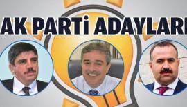 AK Parti Siirt Milletvekili Aday Listesi