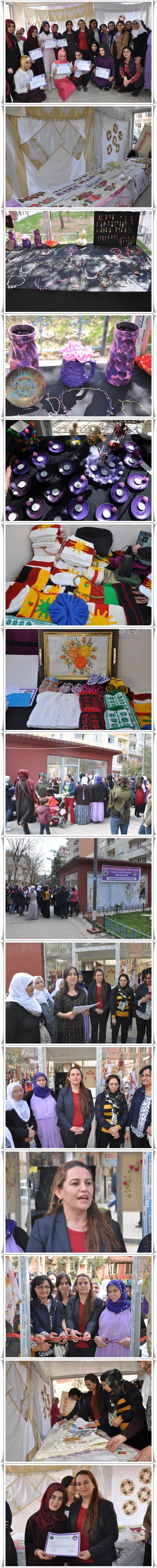 Siirt'te Kadın Emeği Sergisi Açıldı (19)-vert