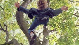 Ağaçtan Düşen Genç Kız Hayatını Kaybetti