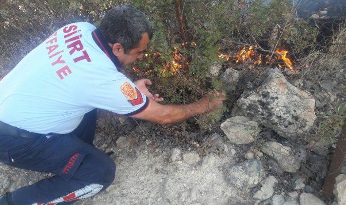 Siirt'te İtfaiye Ekipleri Kaplumbağayı Yanmaktan Kurtardı